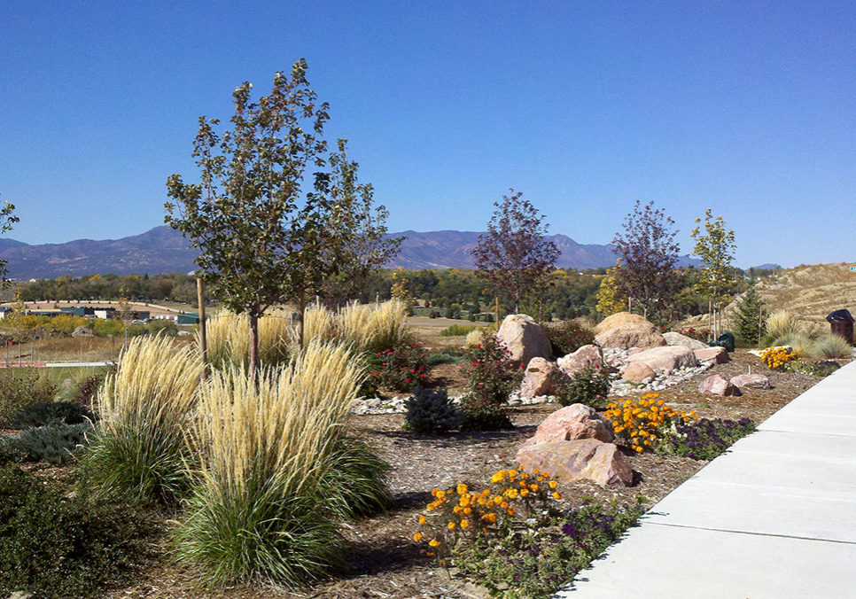 Broadmoor_View_at_Spring_Creek_xeriscape-concept